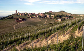 The Roero, Barbera and Barbaresco itineraries